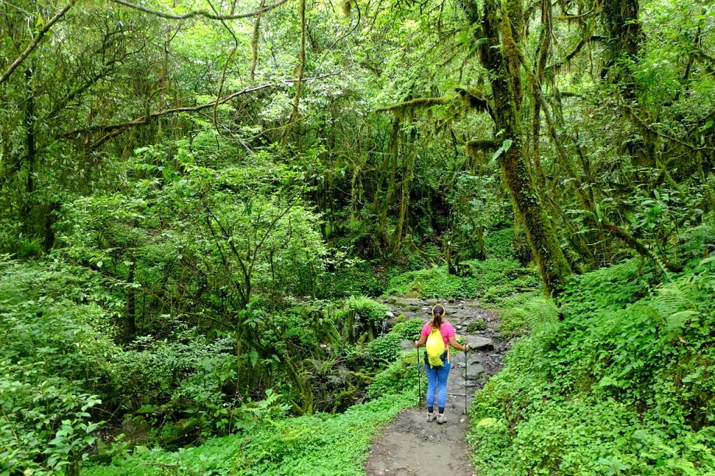 hiker himalayas nepal