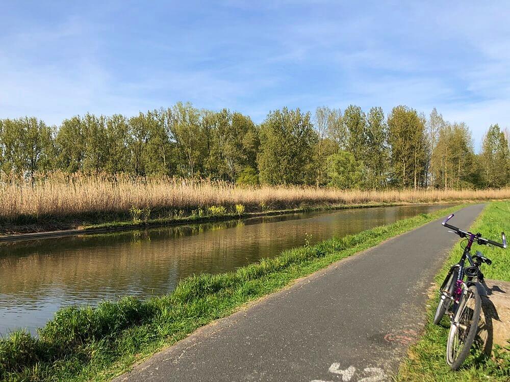 Dender River